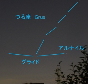 Grus2